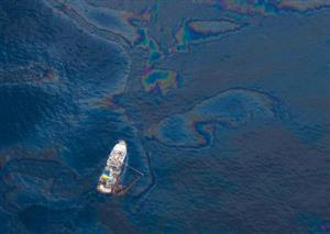 Speeding up nature's oil spill cleaners
